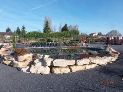Sainte Catherine, plants, végétaux, horticulture, Vivonne, Poitiers